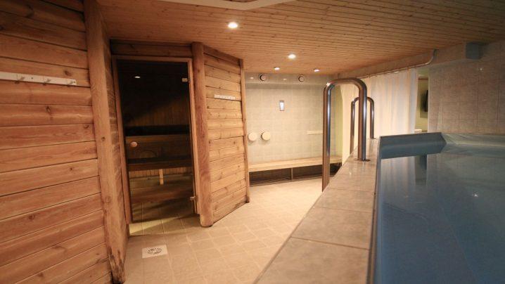 Rendisaun basseiniga I Viiking Spaa Hotell Pärnus I Rendisaun Pärnus
