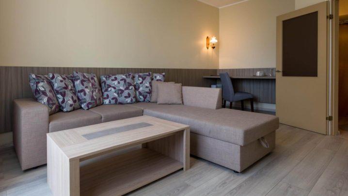 Vanniga sviit elutubaI Viiking Spaa Hotell Pärnus I Majutus Pärnus